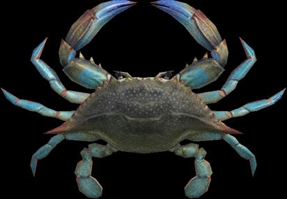 Animal Crossing New Horizons Gazami Crab Image
