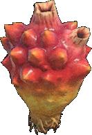 Animal Crossing New Horizons Sea Pineapple Image