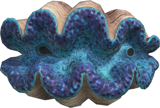 Animal Crossing New Horizons Gigas Giant Clam Image