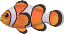 Animal Crossing New Horizons Clown Fish Image