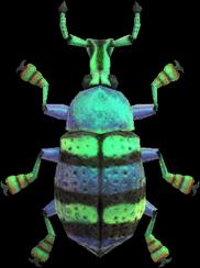 Animal Crossing New Horizons Blue Weevil Beetle Image