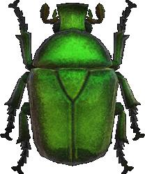 Animal Crossing New Horizons Drone Beetle Image