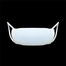 Animal Crossing New Horizons Doctor's Mask Image
