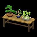Main image of Bonsai shelf