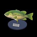Animal Crossing New Horizons Black Bass Model Image