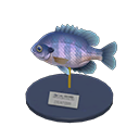 Animal Crossing New Horizons Bluegill Model Image