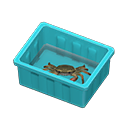 mitten crab