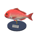Animal Crossing New Horizons Red Snapper Model Image