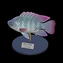 Animal Crossing New Horizons Tilapia Model Image