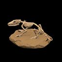 Animal Crossing New Horizons Juramaia Image