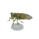 Animal Crossing New Horizons Evening Cicada Model Image