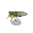 Animal Crossing New Horizons Walker Cicada Model Image