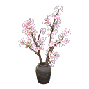 Main image of Cherry-blossom branches