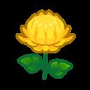 Image of Yellow mums