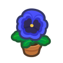 Animal Crossing New Horizons Blue-pansy Plant Image