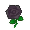 Image of Black roses