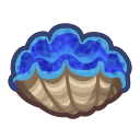 Image of Gigas giant clam